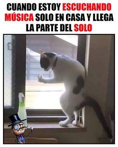 New memes en espanol animales 66 Ideas