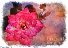 Thumbelina Rose - Miniature Rose - Digital Paint Iv