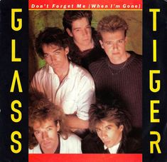 Vintage Vinyl Record Collection - Glass Tiger - Don't Forget Me (When I'm Gone), Manhattan Records, Catalog Country - US, 45 RPM Vinyl Record, Released 1986 Italo Disco, Great Memories, Childhood Memories, Only Song, Vinyl Record Collection, Dont Forget Me, One Hit Wonder, Vintage Vinyl Records, 80s Music