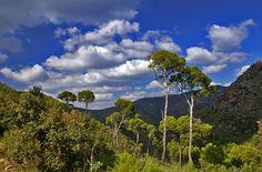 Turismo rural en la Sierra Calderona