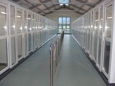 Dog Kennels inside - perfect