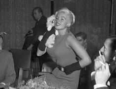 Jayne Mansfield, Norma Jean, Bombshells, Marilyn Monroe, Movie Stars, Candid, Europe, Hollywood, Tours