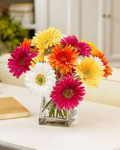 Gerbera Daisies, hydrangea, sunflowers, etc. flower arrangement.  (short tabletop arrangement with bright colors)