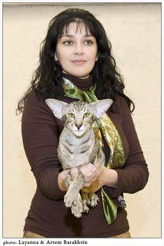 Международная выставка кошек 26 декабря 2009, г. Казань