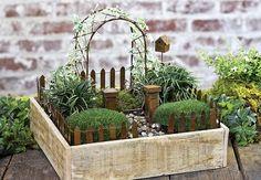 Lindo jardim encantado na caixa                                                                                                                                                                                 Mais
