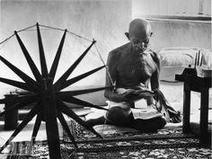Gandhi reads.