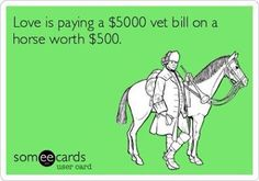It's not the cost of the horse that's expensive, it's all that it takes to keep him or her.