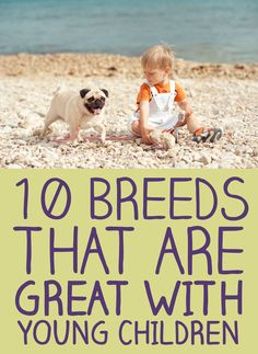 10 Breeds That Are Great With Young Children!