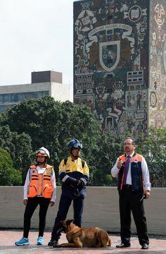 SE REALIZA CON ÉXITO SIMULACRO DE SISMO EN LA UNAM