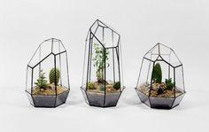 El estudio de diseño canadiense Score + Solder , fundada por Matthew Cleland , ofrece hermosas terrarios y lámparas de cristal, jugando con formas geométricas. Hechas a Mano, estos objetos están diseñados en diferentes tamaños, en vidrio transparente o coloreado , según formas piramidales, cúbicos o dodecaédricas.