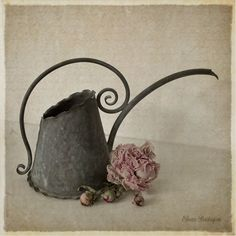 watering can love