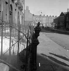 144 Fitzgibbon Street Old Pictures, Old Photos, Ivy Rose, Dublin City, A Whole New World, Dublin Ireland, Old City, Book Of Life, Irish