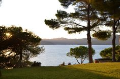 Ferienhaus Elba | Villa mit Pool direkt am Meer