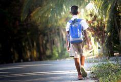 Szkoły, Dla Użytkowników Domowych