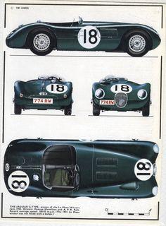 La Type C de 1953