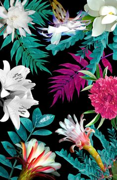 Ideas For Wallpaper Iphone Flowers Pattern Tropical Prints Art Floral, Motif Floral, Floral Prints, Art Prints, Floral Style, Floral Flowers, Flower Art, Florals, Motif Tropical