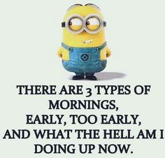 There are 3 types of mornings, early, too early, and what the hell am I doing up now. - minion