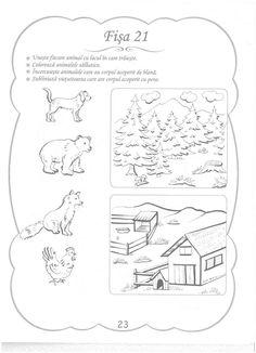 Cunoasterea Mediului - 3-5 Ani Paper Trail, Preschool Activities, Worksheets, Kindergarten, Education, Learning, Classroom, Kids, Class Room