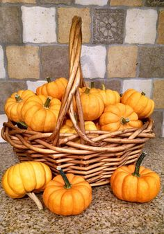 How to Clean and Preserve Pumpkins for Decoration