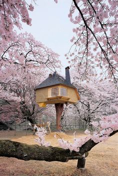Teahouse Tetsu by Terunobu Fujimori, from Tree Houses: Fairy Castles in the Air, published by Taschen