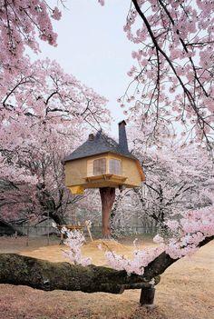 nevver:    Tree house