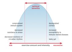 Why Exercising Too Much Hurts Your Gut  ---  The World Health Organization lists physical inactivity as the fourth leading risk factor for global mortality. Without a doubt, being physically active is critical for our health. The benefits of physical activity are well known. Increasing muscle mass increases metabolism, making a healthy weight easier to maintain. Regular physical activity helps improve bone density and …