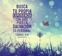 Romanos 14:12 De manera que cada uno de nosotros dará a Dios cuenta de sí.