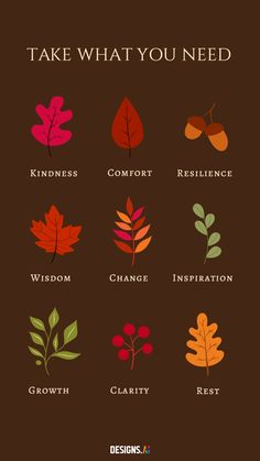 Create your own phone wallpaper with FREE customizable illustrations from Graphicmaker! Take What You Need, Cute Illustration, Phone Wallpapers, Autumn Leaves, Self Love, Create Your Own, Illustrations, Motivation, Creative