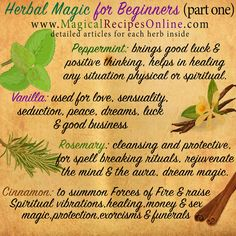 DETAILED Herbal Magic in the following articles: VANILLA -> http://www.magicalrecipesonline.com/2015/01/herb-analysis-vanilla-witchs-best-friend.html CINNAMON -> http://www.magicalrecipesonline.com/2012/05/herb-analysis-cinnamon-herbal-fire.html PEPPERMINT -> http://www.magicalrecipesonline.com/2012/04/herb-analysis-peppermint.html ROSEMARY -> http://www.magicalrecipesonline.com/2012/09/herb-analysis-rosemary-dew-of-sea.html