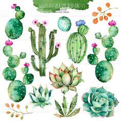 Conjunto de mano de alta calidad de cortes suculentos y cactus pintura de acuarela illustracion libre de derechos libre de derechos