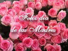 Rosas rosas con un mensaje Feliz dia de las madres Tags:  rosas,  10 DE MAYO, DIA DE LAS MADRES