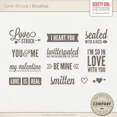 Celebrate the moments with your loved ones using this sweet set of word art. Perfectly coordinates with the February Company Stash kits. Includes: 12 brushes (10 words, 2 hearts - all in both .png & .abr)