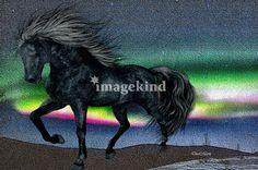 Black Horse by DoriMarie Maccabee