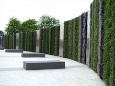 Living Wall at the Birmingham NEC | Community Post: 39 Insanely Cool Vertical Gardens
