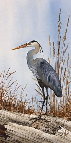 Heron Painting - Natures Gentle Beauty by James Williamson