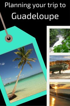 Info and tips to help you plan your trip to the Guadeloupe islands in the Caribbeans: overview, seasons, transportation. Best Caribbean Destinations, Travel Destinations, Caribbean Culture, Beautiful Sunrise, Plan Your Trip, Where To Go, Trip Planning, Islands, Transportation