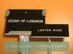 1 line labels