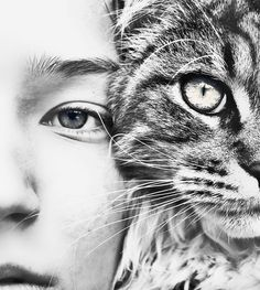 love the way the black and white bring out so many details for both the cat and the human. The eyes look fantastic!: Face, Girl, Animals And Humans Photography, Pet Photography Ideas Cats, Close Up, Closeup, Black, Eye