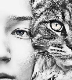 #pet #photography