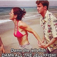 Damn all the jellyfish! First episode I ever saw right here! Watched it on a plane with my bro :)