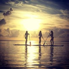 Activity: Paddleboard, Snorkel, Dive, Surf, Snuba, Kiyak, Canoe, White Water Raft