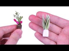 DIY Miniature Dollhouse Plants How to Make Miniature Dollhouse Things - YouTube