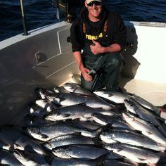 Kinns sport fishing algoma wi 5 1 12 for Kewaunee fishing report