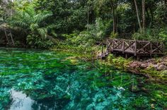 Os 50 melhores destinos de ecoturismo do Brasil.