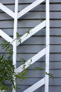 diy chevron trellis for sweet peas