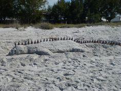 Sand sculpture, Captiva Sanibel Beach, Sanibel Island, Sand Sculptures, Sand Art, My Happy Place, Where To Go, Spring Break, Florida, Places