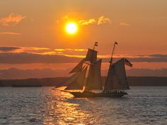 Tall ship Lynx at Sunset - Photo by Bob Harbison This is a really cool picture! I love the ship against the sunset.