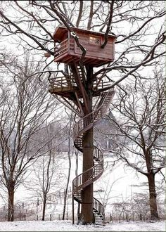 Winter Tree house spiral staircase