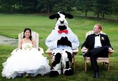 Chick-fil-A Subtly Announces It Is An Experience Company - StoryMiners Eat Mor Chikin, Customer Stories, Special Guest, Wedding Photos, Wedding Ideas, Wedding Reception, Outdoor, Proposal, Animals
