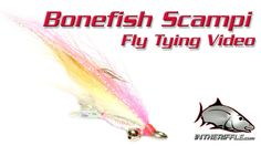 BONEFISH SCAMPI FLY